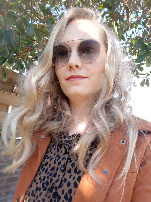 Lisanne de Vries online lesprogramma